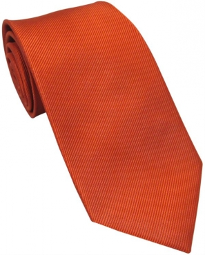 Burnt Orange Silk Tie