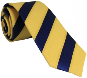 Gold and Navy Striped Silk Tie with Dark Gold Borders