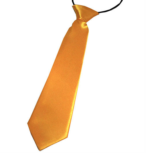 Burnt Yellow Boys Tie